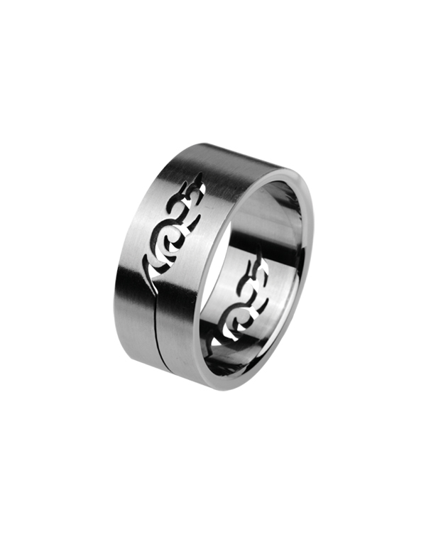 Кольцо стальное с изо...